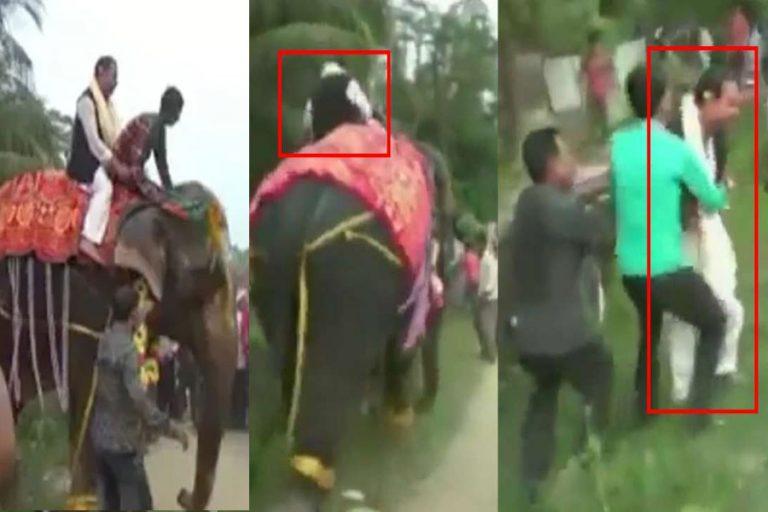 हाथी क्यों बिदका? डिप्टी स्पीकर क्यों गिरे? समर्थक क्यों हंसे? पढ़िए पूरी खबर